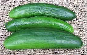 cucurbits seeds for food