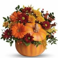 halloween flowers and gifts torrington florist lily and vine