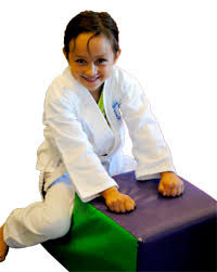 Barnes Karate Testimonials Dawn Barnes Karate Kids
