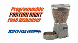 petmate portion right programmable pet feeder 5 lb chewy com