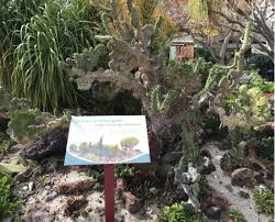 Quail Botanical Gardens Free Tuesday The San Diego Botanic Garden Is The Most Fantastical Day Trip In