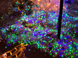 when do the zoo lights start la zoo lights things to do in los angeles
