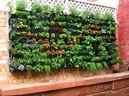 home vegetable garden plans easy vegetable garden plans beginners ghanadverts club