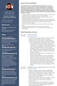 Resume For Entrepreneurs Examples by Contractor Resume Samples Visualcv Resume Samples Database