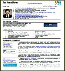 professional resume com new resume format in the social media era u2013 tae hyun moon pse