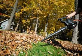 Fall Cleanup Landscaping by Spring Fall Clean Up S Raking Dethatching And Aerating Your