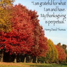 thanksgiving thanksgiving quotes picture ideas gratifying