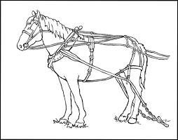 farm horse harness