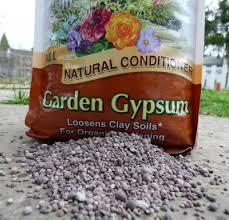 garden gypsum information u2013 is gypsum good for the soil