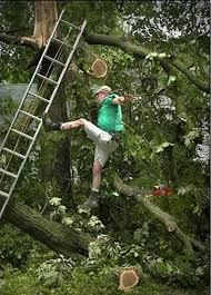Ladder Meme - a guy falling off a ladder memey com