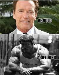 Arnold Schwarzenegger Memes - arnold schwarzenegger