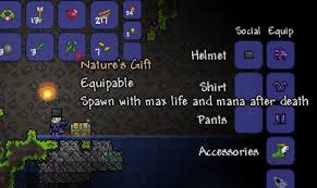 Terraria How To Make A Bed Terraria Sir Digsalot And The Dungeon Guardian Quarter To Three