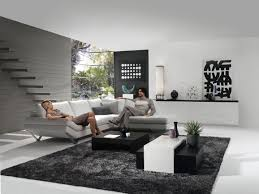Furry Black Rug Living Room Fascinating Modern Black White Grey Living Room