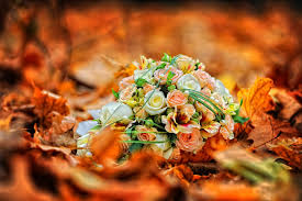 Fall Flowers Photogrpahy Roses Autumn Flowers Leaves Fall Leaf Bouquet