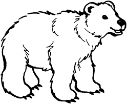excellent brown bear brown bear coloring pages