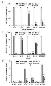 palmatine from mahonia bealei attenuates gut tumorigenesis in