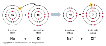 covalent bonds organic chemistry socratic