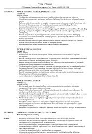 senior internal auditor resume samples velvet jobs