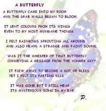 essay on butterfly butterfly struggles an inspirational lesson