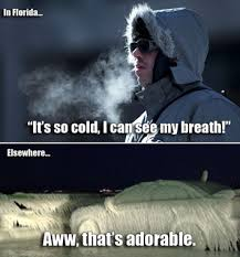 Cold Weather Meme - thin blood and florida winters is it too cold for you