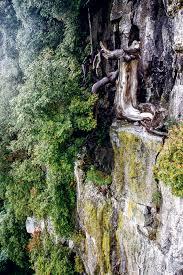 refuge alpinist com