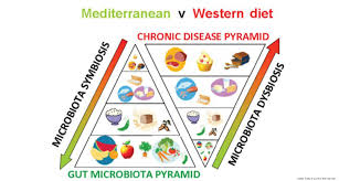 conserving and restoring the human gut microbiome by increasing