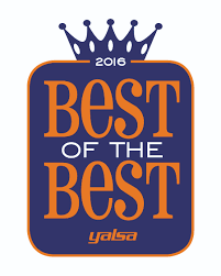 yalsa s best of the best library services association