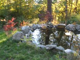 small backyard pond midwest permaculture