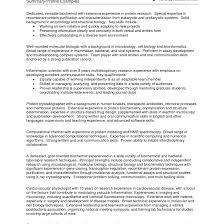 exles of well written resumes how to write resume summary exle free career resume template