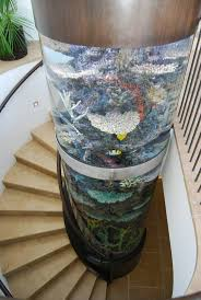 Beautiful Home Fish Tanks by 177 Best Aquarium Ideas Images On Pinterest Home Animals And