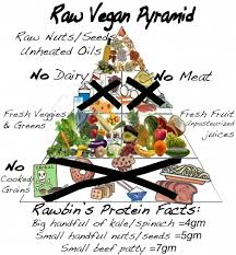 49 best raw food diet images on pinterest raw food recipes food