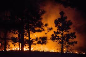 Wildfire Colorado News by Colorado Wildfire Kills Two Destroys Hundreds Of Homes