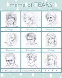 Tears Meme - meme of tears exle by feriowind on deviantart