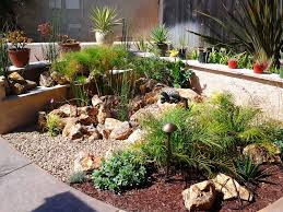 Landscape Curb Appeal - new landscape curb appeal desert drought tolerant starting