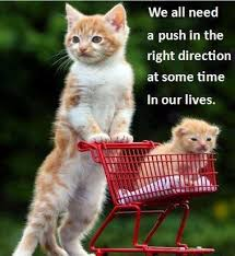 we all need a push in the right direction life quotes quotes cute