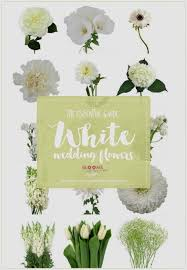 wedding flowers list list of white flowers names white flowers