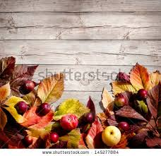 thanksgiving dinner table stock images royalty free images