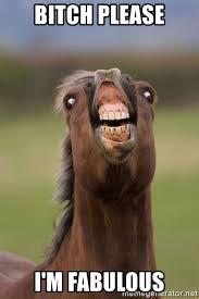 I Am Fabulous Meme - bitch please i m fabulous horse meme generator