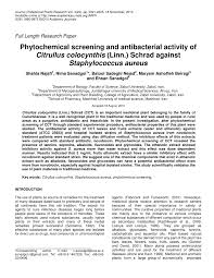 phytochemical screening and antibacterial activity of citrullus