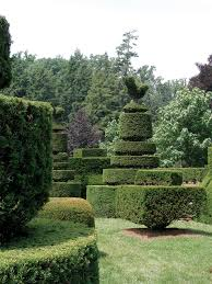 Azalea Topiary How To Prune Common Southern Shrubs State By State Gardening