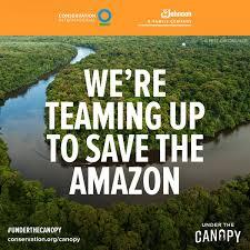 canopy amazon brandchannel sc johnson brings vr to csr with amazon rainforest project