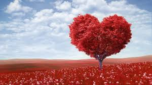 love desktop background wallpapers free love wallpaper high quality resolution long wallpapers