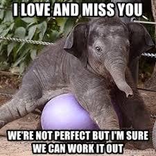 Elephant Meme - i love you elephant meme the best elephant of 2018