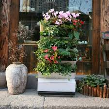 buy cheap china living wall vertical garden products find china