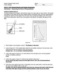 the absorption of light by photosynthetic pigments worksheet answers photosynthesis worksheet answer key fill online printable