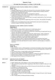 banking resume exles digital banking resume sles velvet