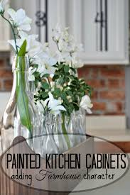 Photos Of Painted Kitchen Cabinets Painted Kitchen Cabinets Adding Farmhouse Character U2014 The Other