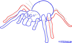 jeep drawing easy drawn spider easy pencil and in color drawn spider easy