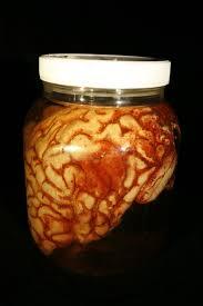 slide show for album preserved specimens and specimen jars