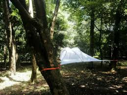 free shipping big size hanging tree tent hammock tent hanging
